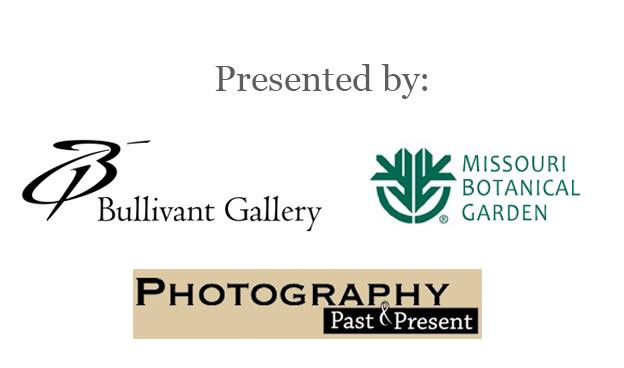 BVG,MBG,PhotoPast_Logos_V2